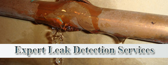 Gainesville Water Leak Detection